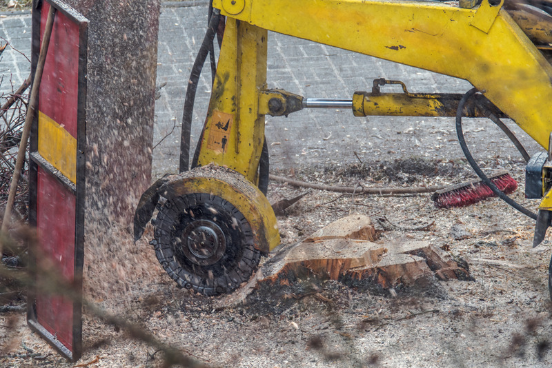 stump grinding Century City
